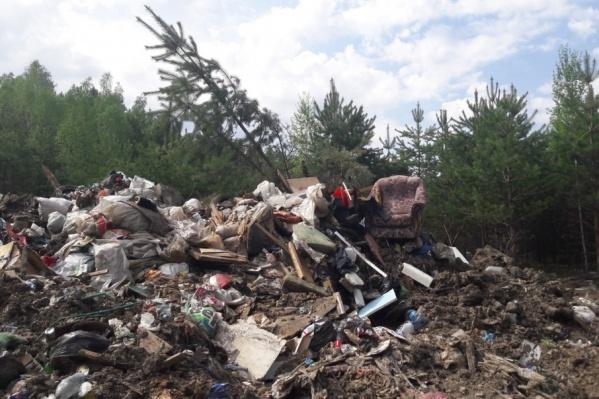 Очистить от строительного и бытового мусора предстоит в общей сложности около пяти гектаров
