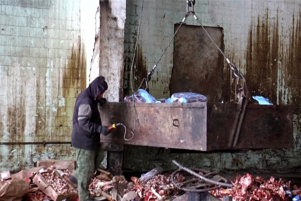 Чиновников обязали закрыть доступ к скотомогильнику