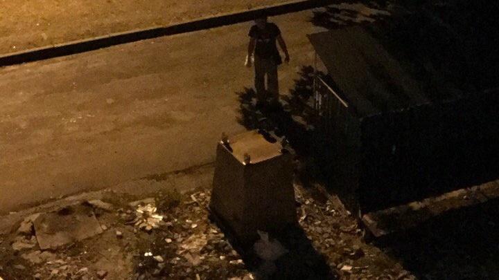 В Ростове на Вятской орудует вор мусорных баков
