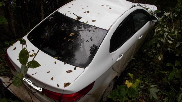 В Ярославской области машина осталась без капота после встречи с лосем