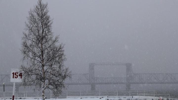 Теплее, чем обычно: середину декабря Поморье встретит мокрым снегом и южным ветром