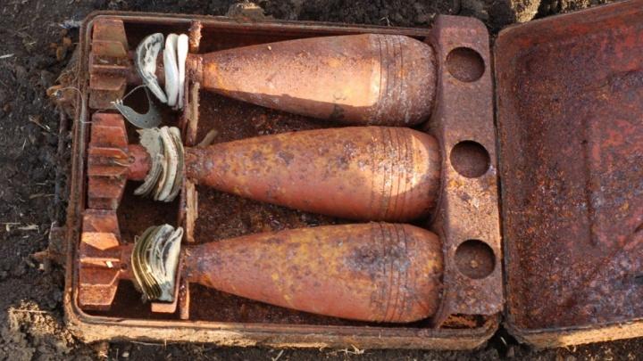Будут разминировать: в донском поле нашли 13 снарядов времен Великой Отечественной