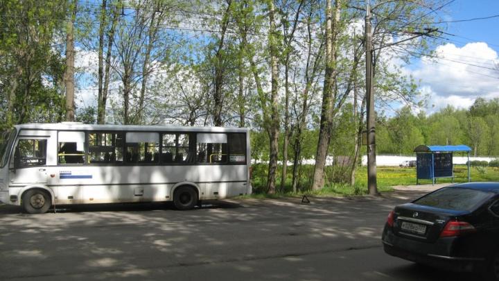 В ярославской маршрутке серьезно пострадала трехлетняя девочка