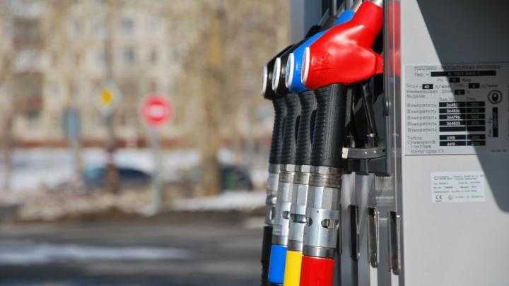 За месяц в Поморье подешевел дизель и подорожал бензин