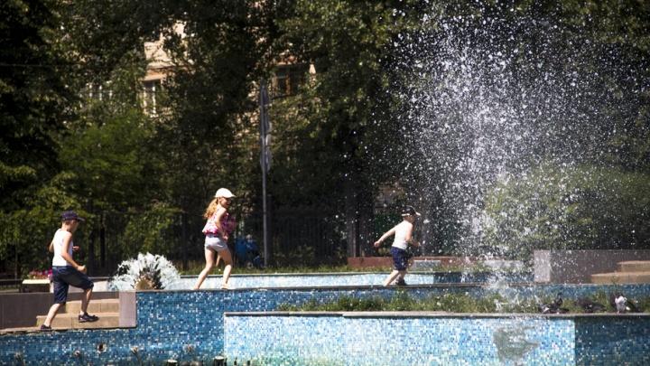 На Дону жара к выходным достигнет 42 градусов