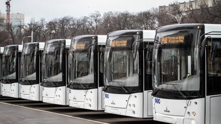 Для ростовских школьников в этом году закупят 130 специальных автобусов