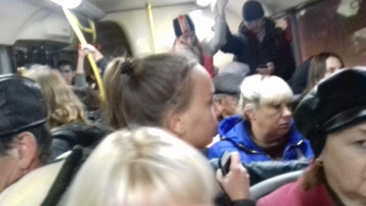 «Мы не селедка»: волгоградцы жалуются на страшную давку в автобусах