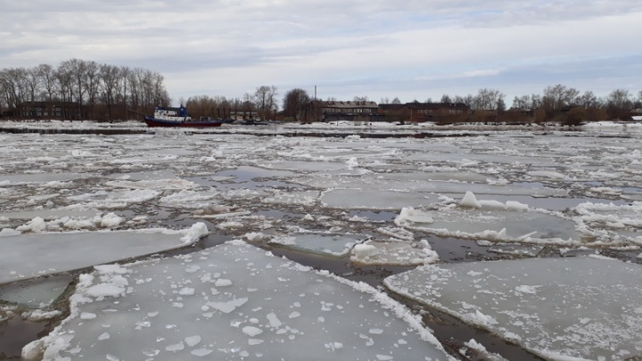 Голова ледохода на Северной Двине прошла поселок Чухчерема в Холмогорском районе