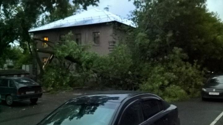 Жителям Прикамья, пострадавшим от урагана, восстановили электричество