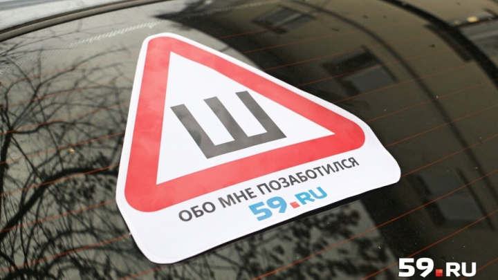В Перми 31 октября будут бесплатно раздавать знак «Шипы»