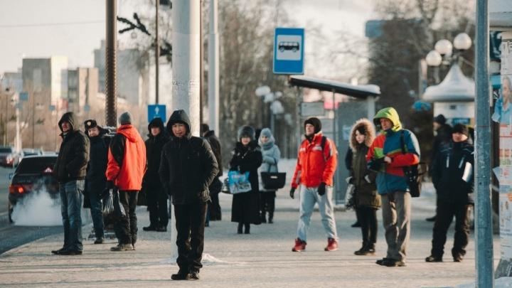 Корпоратив на улице, верблюды, отмена автобусных рейсов и занятий в школе: как тюменцы пережили четвёртый морозный день