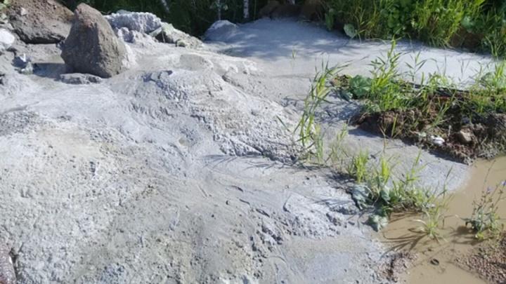 Прокуратура начала проверку по публикации 74.ru о сливе цемента в лес в «Парковом»