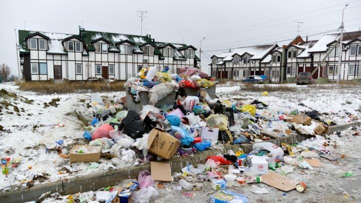 В Волгограде коммунальщики забыли о мусоре на улице Василевского