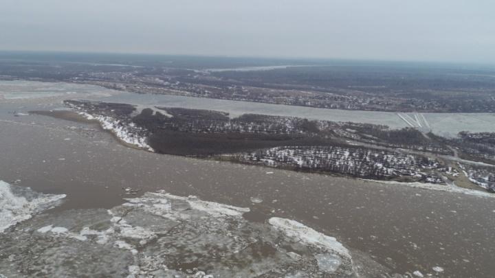 Ледоход достиг Виноградовского и Холмогорского районов