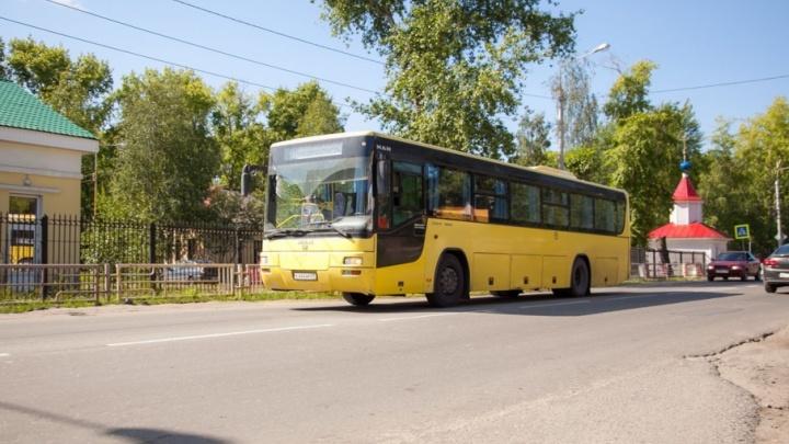 Владелец маршрутов №76, 11 и 38: «Город не готов к новым автобусам»