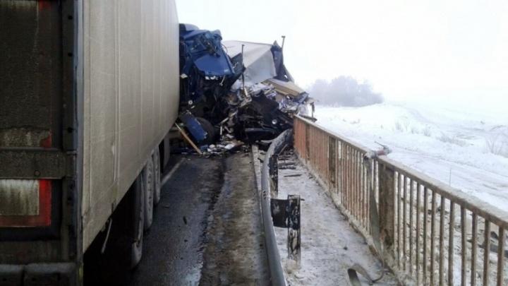 Появились фото с места ДТП на М-5, где лоб в лоб столкнулись два грузовика