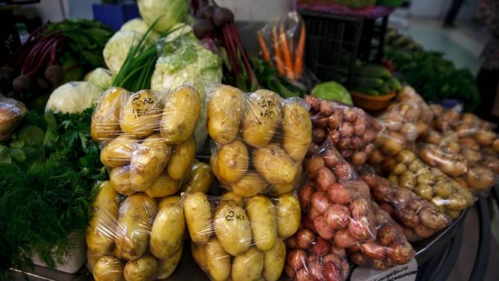Урожай-2017: как дожди отразились на тюменских аграриях