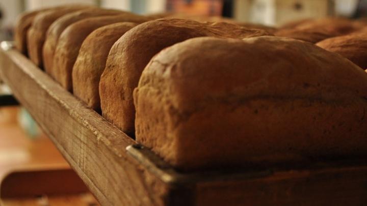 Директор хлебобулочного предприятия в Северодвинске полгода не платил зарплату работникам