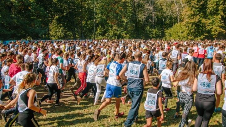 Пешком мимо пробки и 12 км бегом по лесу: тысячи самарцев покорили «Кросс наций»