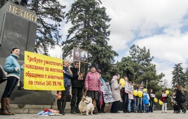 Зоозащитники в центре Ростове собирали подписи и требовали ужесточить законодательство