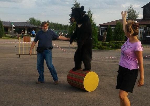 На день рождения зоопарка станцевал медведь