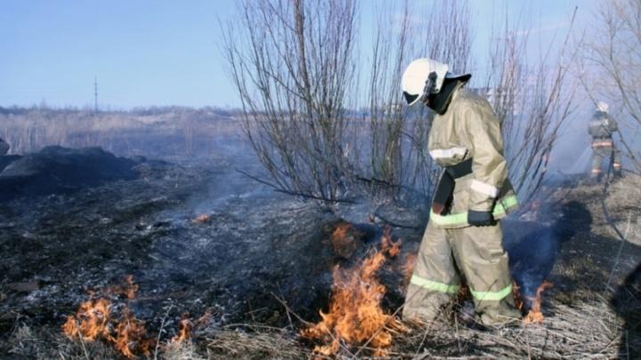 В лесах Архангельской области с 1 мая вводится пожароопасный сезон