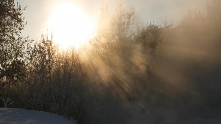 Тюменцы потерялись в лесу в 30-градусный мороз и вызвали на помощь спасателей