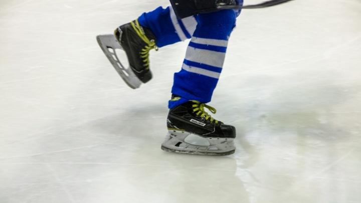 Больше на хоккей: содержание «Лады» обойдется дороже, чем «Крыльев Советов»