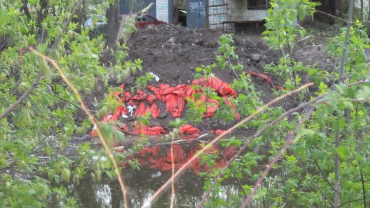 В Самаре бизнесменов оштрафуют на 250 000 рублей за засыпку пруда педуниверситета