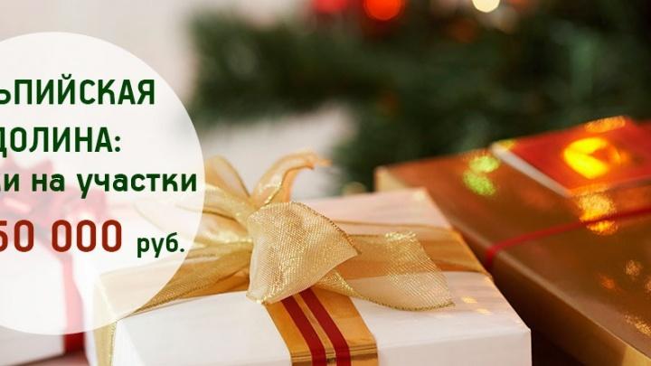 Подарок к Новому году: где купить участок в коттеджном поселке со скидкой до 480 тысяч рублей