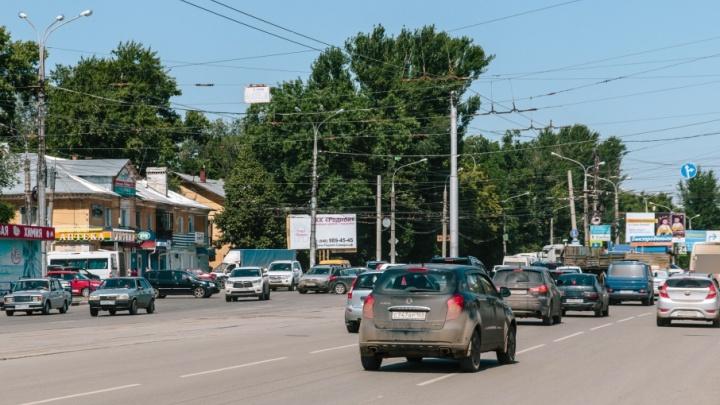 Спилить, нельзя оставить: в Кировском районе нашли десятки аварийных деревьев