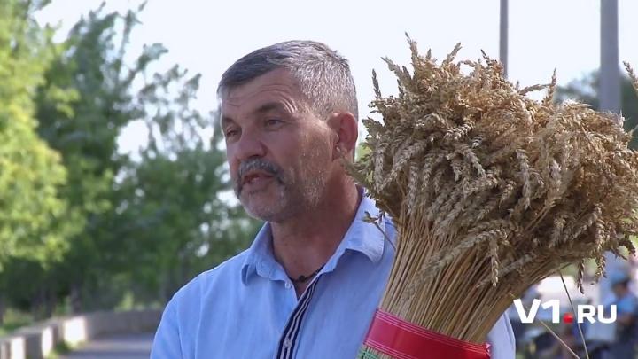 Зерно для волгоградского каравая Мира передадут Грузия, Германия и Молдова