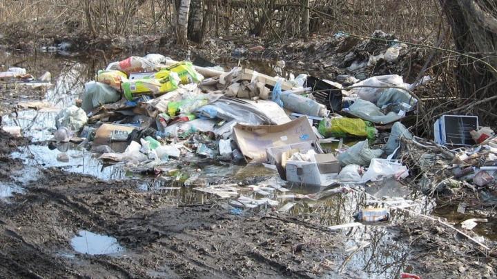 На Которосли ярославцы оставили после себя восемь кубометров мусора