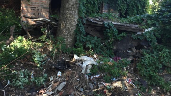 Три грузовика с мусором вывезли из ростовского двора на Портовой