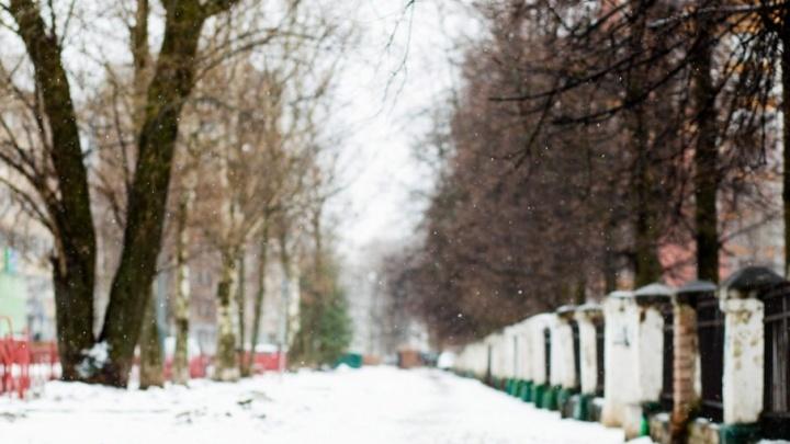 Синоптики рассказали, когда в Ярославле выпадет первый снег