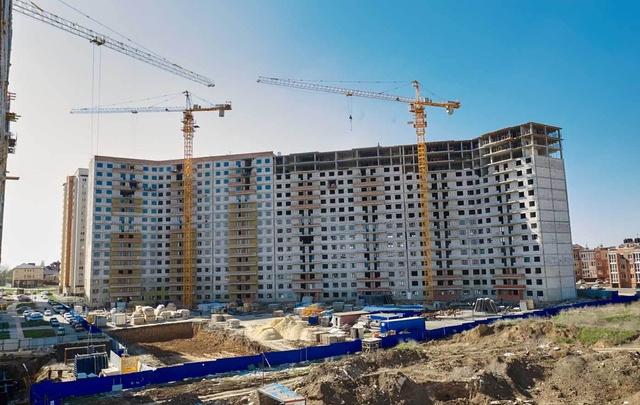 Инвестор попросил Виталия Кушнарева присоединить Аксайский район к Ростову