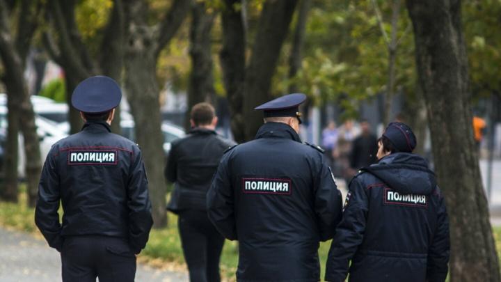 Полиция рассказала, как на Дону отметили День России