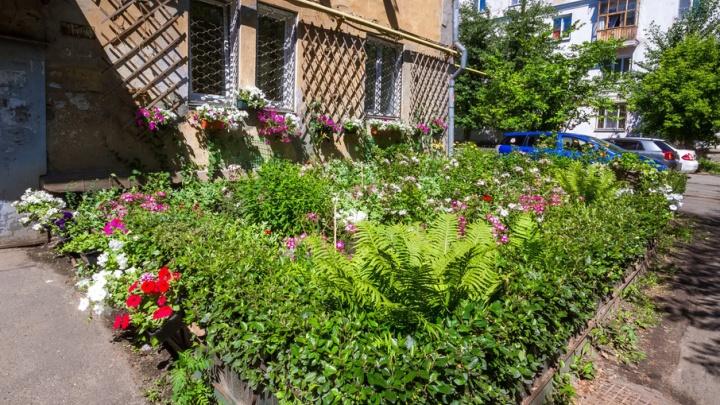 Красота, чистота и цветочки: челябинцы сами украсили свой двор