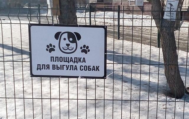Жителей челябинской многоэтажки поссорила площадка для выгула собак