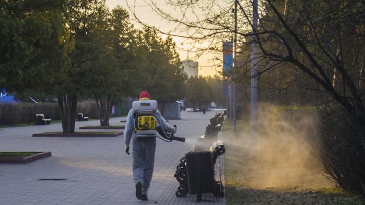 В Челябинске парк Гагарина обработали от клещей