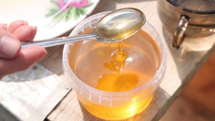 Афиша 74: погружаемся в 80-е, ищем правильный мед и готовимся к Дню города