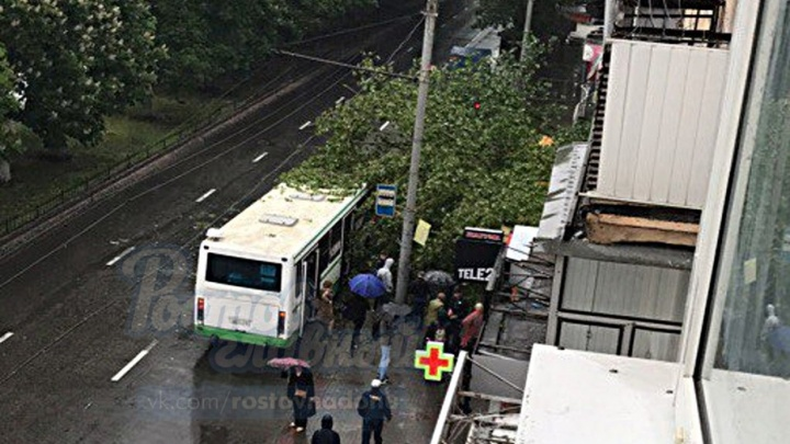 Из-за сильного ветра дерево упало на автобус в центре Ростова