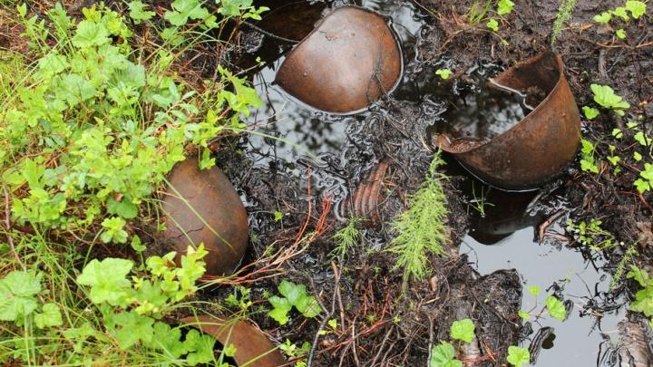 Поисковики Поморья отправились искать погибших красноармейцев в Республику Карелия