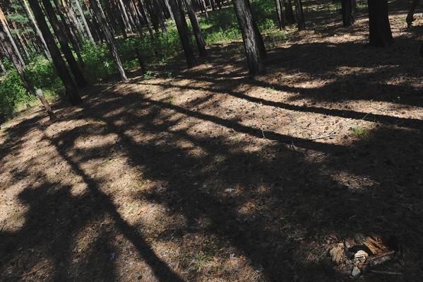 Приятели дважды возвращались в лес, чтобы избавиться от умершего мужчины
