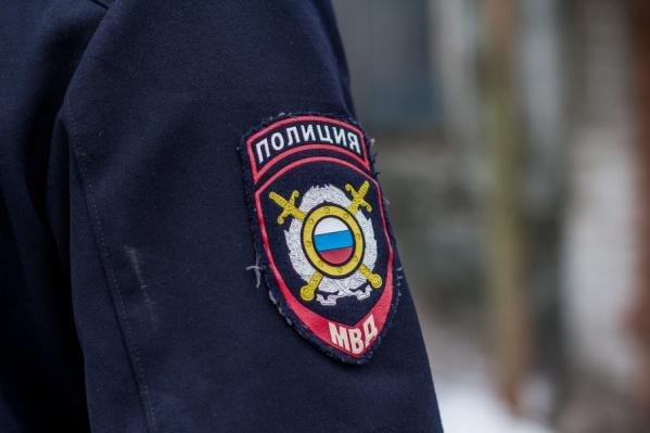 11,5 тысяч правоохранителей будут охранять порядок в Самаре во время ЧМ