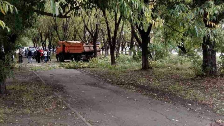 «Сердце кровью обливается»: на Кашириных убрали деревья, за которые боролись челябинцы