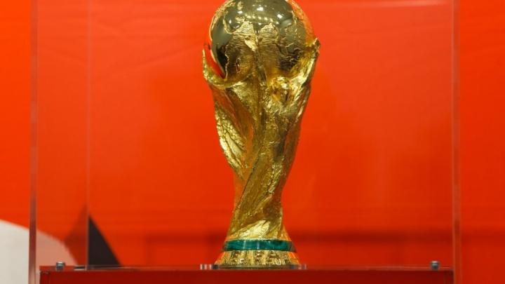На ЧМ-2018 в Волгограде сыграют Англия — Тунис, Нигерия — Исландия, Саудовская Аравия — Египет, Япония — Польша