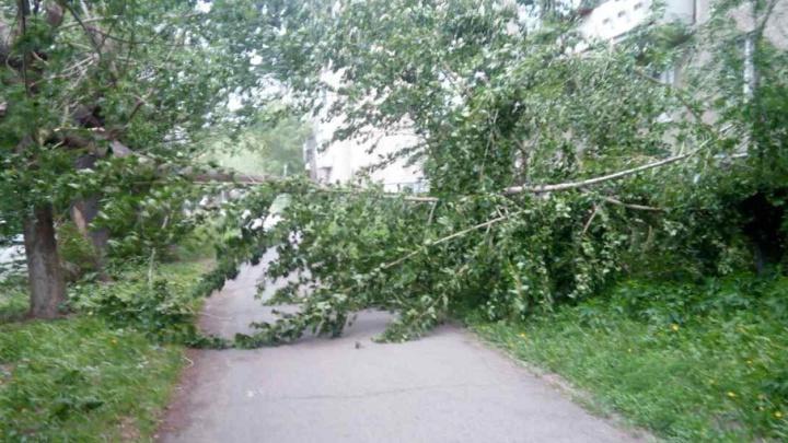 Обрушившийся на Челябинск ураган валил деревья и снимал крыши