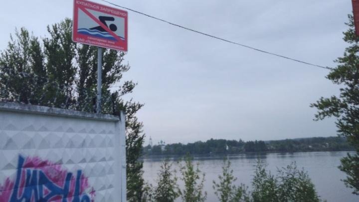 В Ярославле власти запретили купаться в Волге: где поставили табличку
