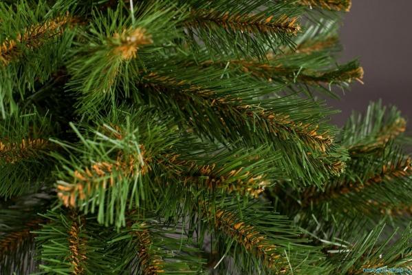 Приобрести новогоднюю елку высокого качества с серьезной скидкой можно уже сегодня